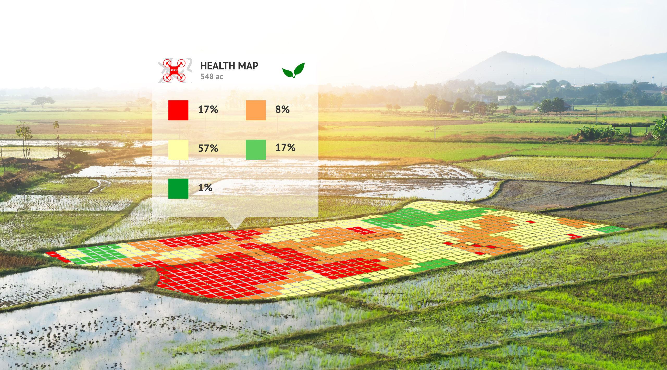Inovação Tecnológica: uma tendência para o Agronegócio