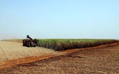 Programa Nacional de Bioinsumos é lançado pelo Ministério da Agricultura