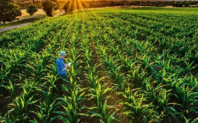 O papel das cooperativas em levar tecnologias para os agricultores