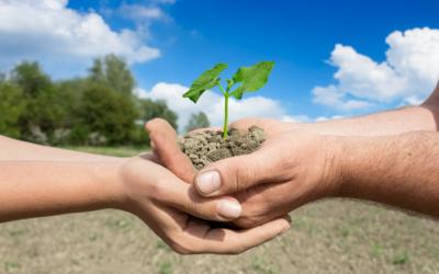 Agricultura familiar: como a Irrigação inteligente pode auxiliar?