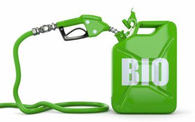 Biocombustíveis e o Brasil
