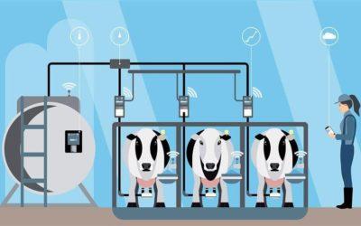 Inovações e tecnologias na produção de leite no Brasil