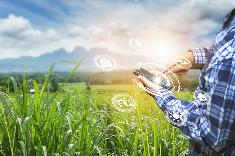 O campo digitalizado: desafios da Agricultura 4.0