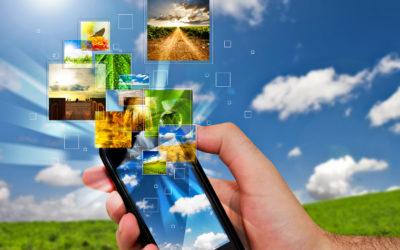 Pesquisa e desenvolvimento: futuro do agro está na inovação