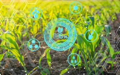 Biotecnologia: ferramenta para reduzir o impacto ambiental na agricultura