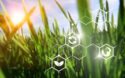 Bioenergia: iniciativa estimula maior produção de biocombustíveis