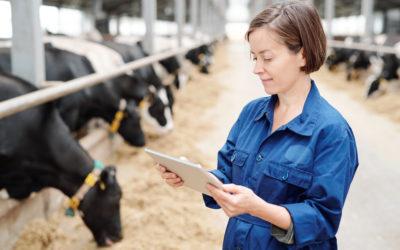 Pecuária digital e seus impactos nos sistemas produtivos