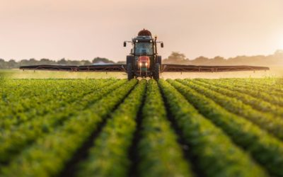 Desenvolvimento do mercado nacional de fertilizantes pode ajudar aumentar ainda mais a produtividade do agronegócio