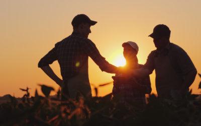 Solução de problemas na fazenda: como eliminá-los de forma definitiva? (Parte 1/3)