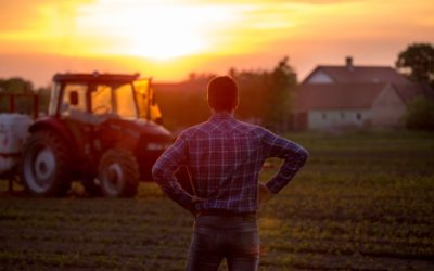Solução de problemas na fazenda: entendendo o problema (Parte 2/3)