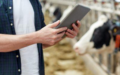 Conheça três passos para melhorar a gestão e a execução do trabalho na fazenda
