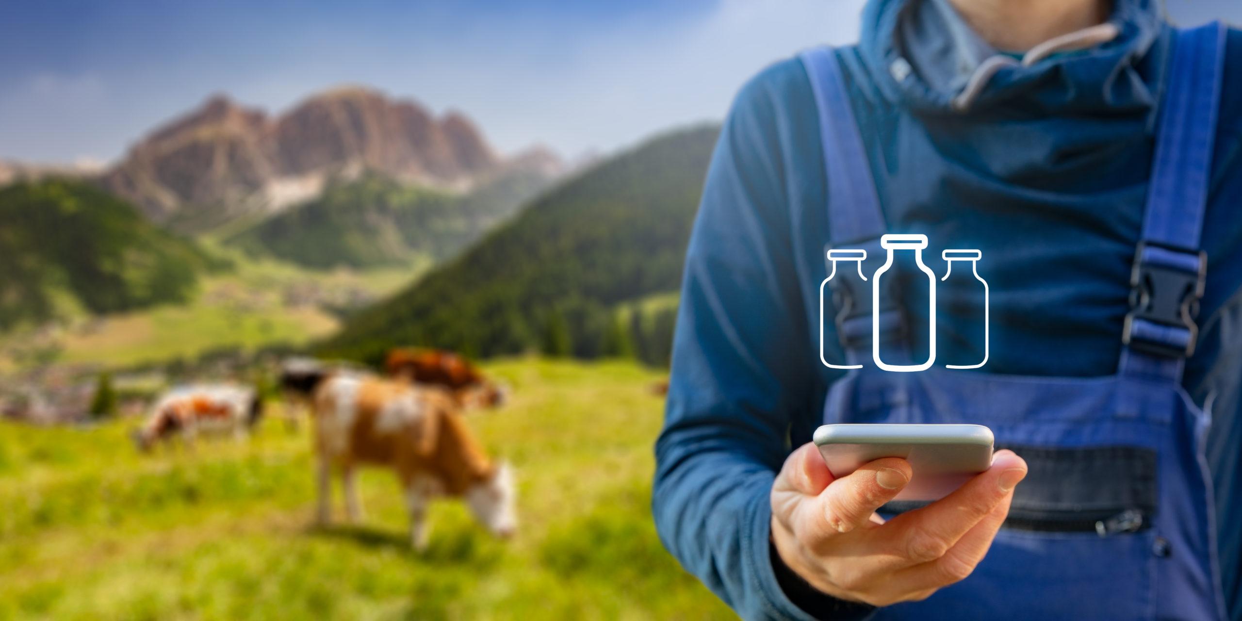 Algoritmo identifica bovinos individualmente no campo por imagens