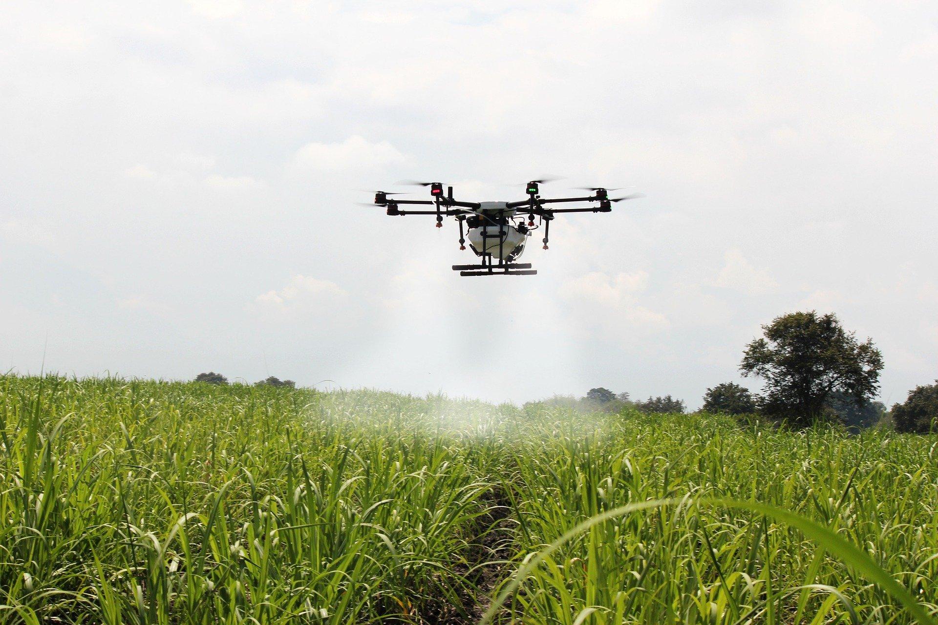 Aplicação de defensivos biológicos por drones é alternativa para controle de pragas