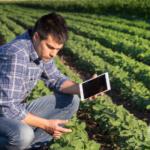 digital-agro-2021-cws