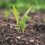 digital-agro-irrigacao