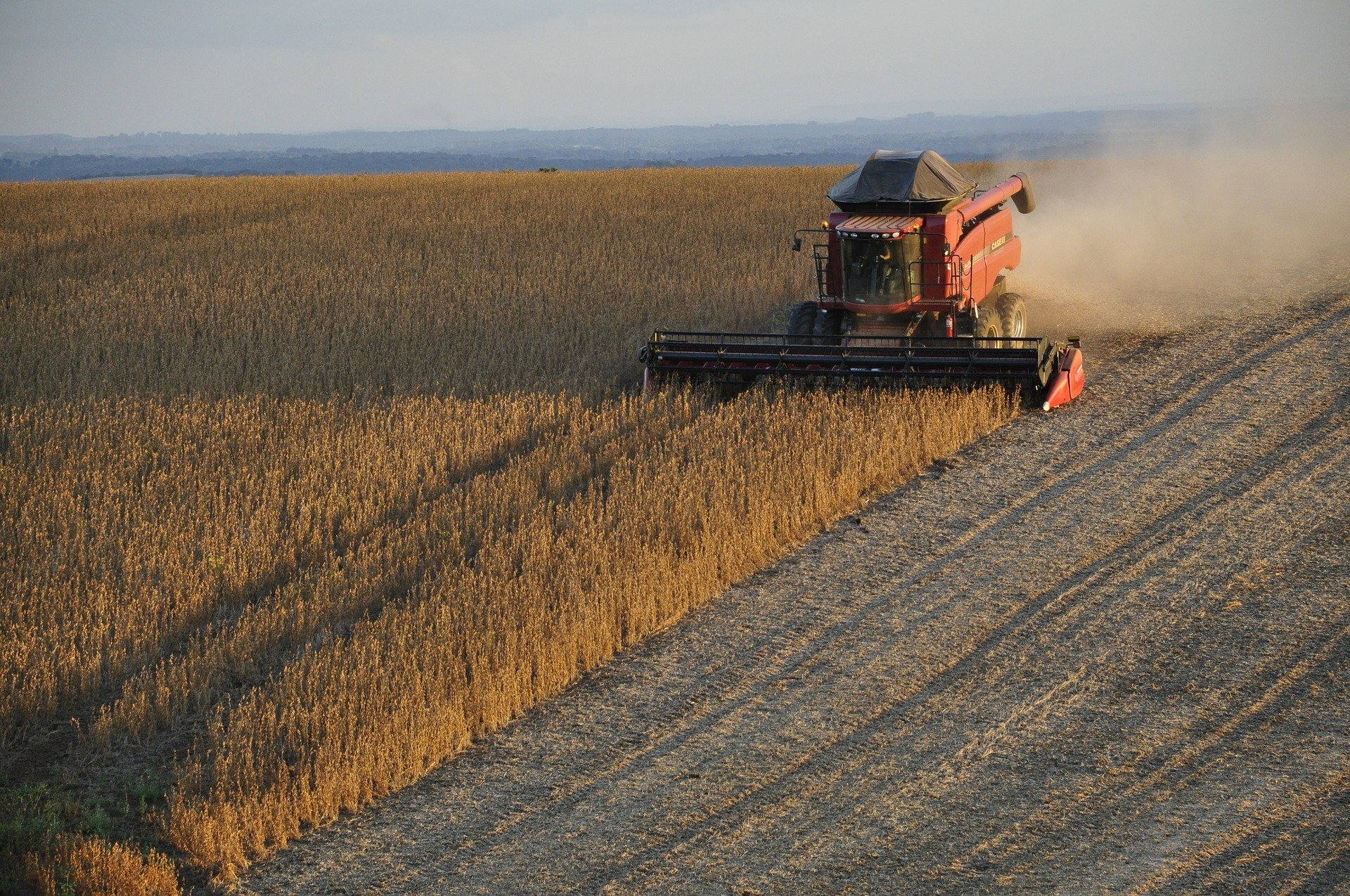 Academia Global do Agronegócio capacita gestores de toda a cadeia de valor do agronegócio