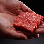 carne-em-impressora-3d-digital-agro