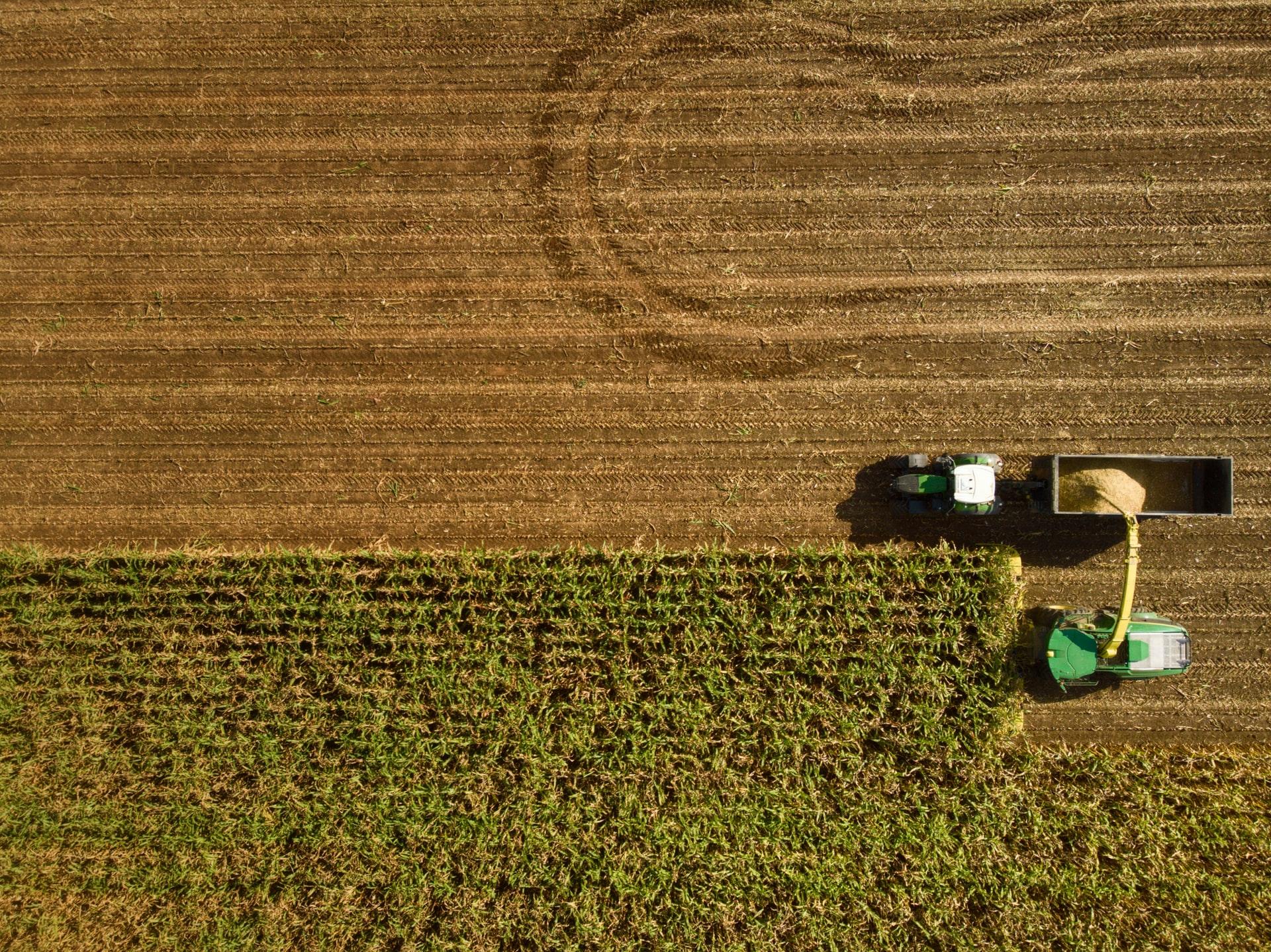 A agricultura digital está transformando os sistemas agroalimentares
