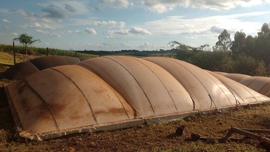 Condomínios de agroenergia promovem economia para pequenas propriedades rurais